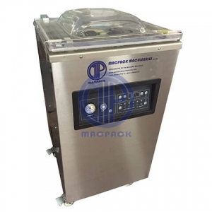 Standing Vacuum Packing Machine